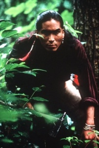 Uncas and Chingachgook were Wise Guides/ Noble Savage in Last of the Mohicans.